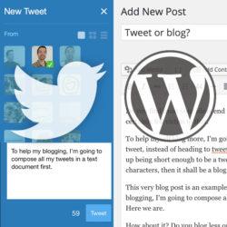 Twitter or Wordpress?