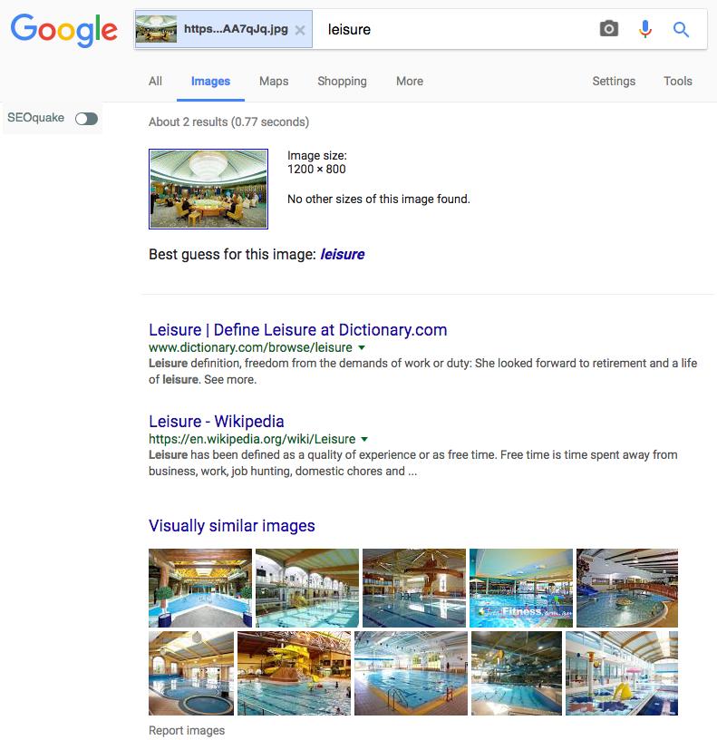 google reverse image search: leisure