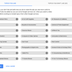 Google Ads: topics you like